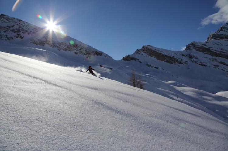 Glade skiing 3