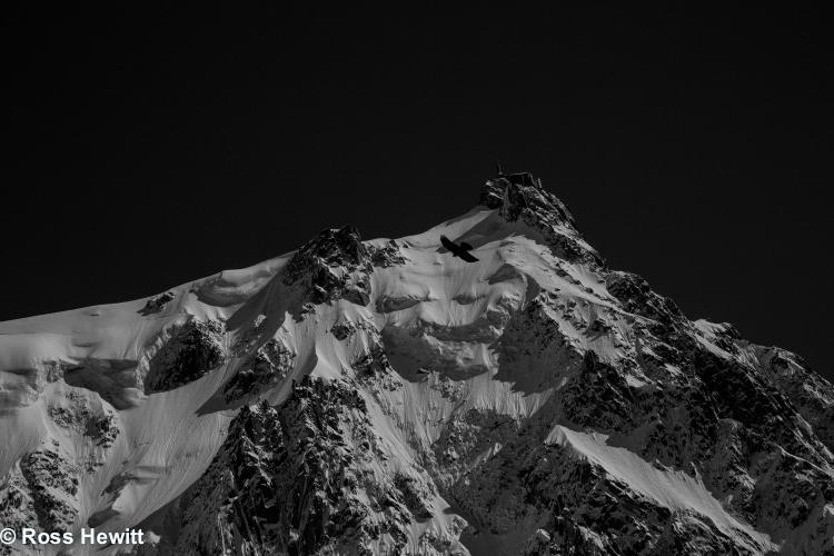 Frendo spur ski descent-207