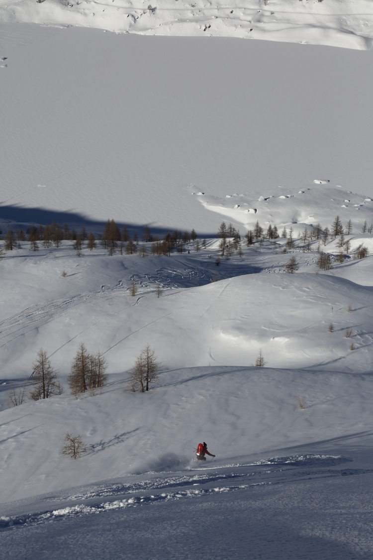 Glade skiing 4