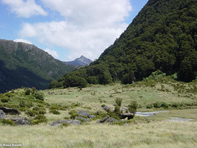 New Zealand 2006-86