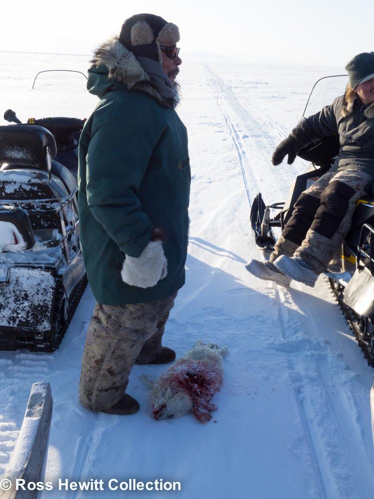 Baffin Berghaus Black Crows Ski Mounatineering Expedition-12